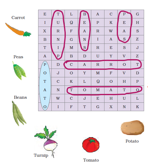 NCERT Solutions Class 3 English Unit 3 The Enormous Turnip - 6