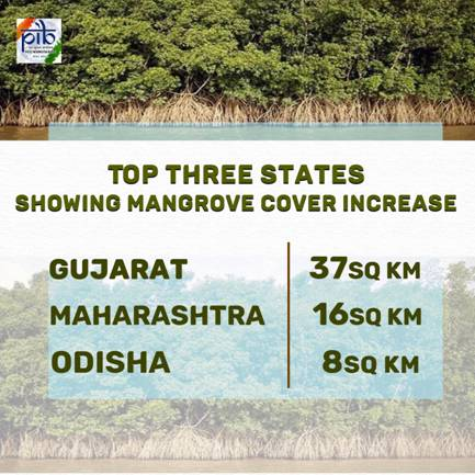 Top 3 States showing Mangrove Cover Increase