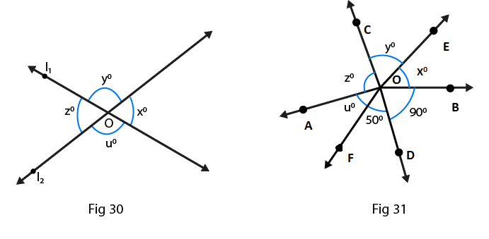 RD Sharma Solutions for class 7 Maths Chapter 14 Lines and Angles Image 12