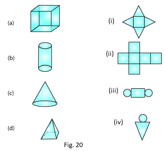 RD Sharma Solutions for Class 7 Maths Chapter 19 Visualising Solid Shapes Image 3