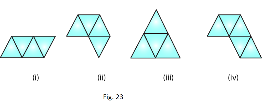 RD Sharma Solutions for Class 7 Maths Chapter 19 Visualising Solid Shapes Image 6