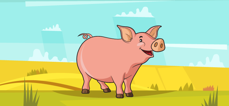 Sound made by a pig - GK Questions for Class 2