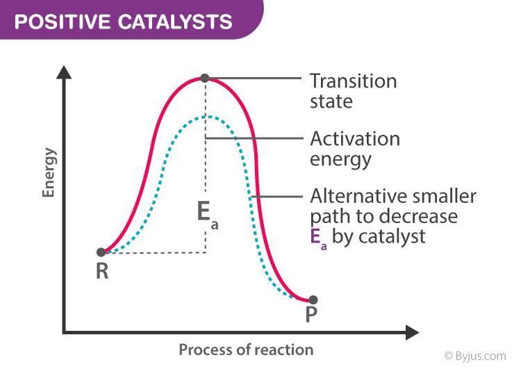 Positive Catalysts