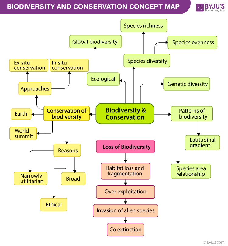 Biodiversity and Conservation Concept Map