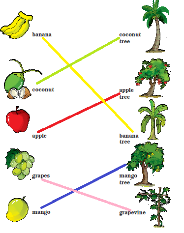 NCERT Solutions Class 1 English Unit 4 Story Mittu and the Yellow Mango - 6