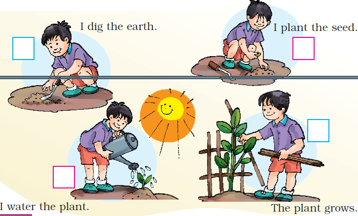 NCERT Solutions Class 1 English Unit 6 Our Tree - 3