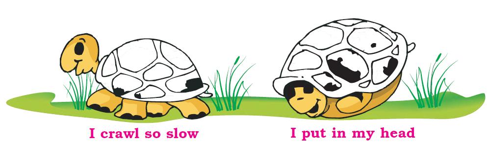 NCERT Solutions Class 1 English Unit 8 Poem A Little Turtle - 1