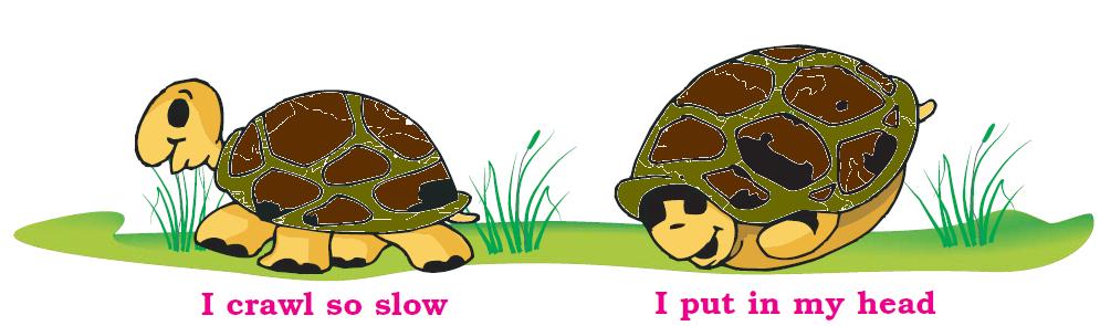NCERT Solutions Class 1 English Unit 8 Poem A Little Turtle - 2