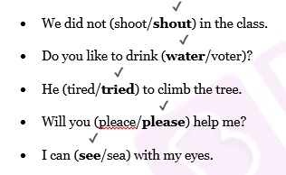 NCERT Solutions Class 2 English - Unit 10 Poem Strange Talk-1