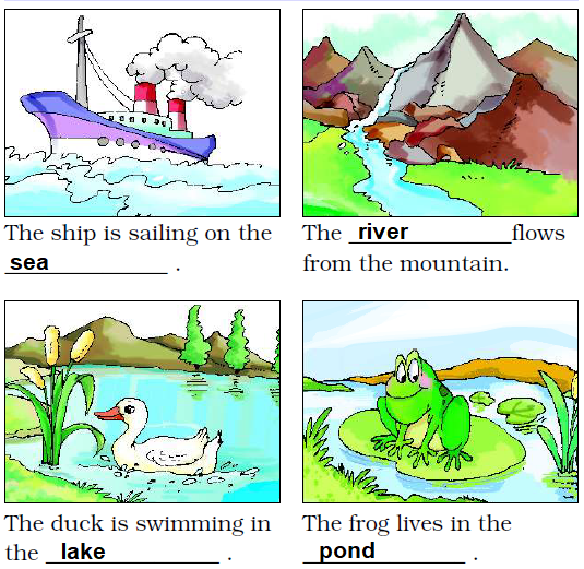NCERT Solutions Class 2 English Unit 4 Poem Rain - 9