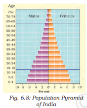 Population Pyramid of India