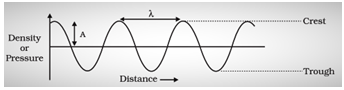 Amplitude (A)