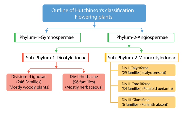 Hutchinson's Classification