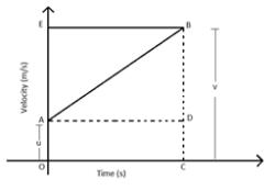 Velocity-Time Graph 4