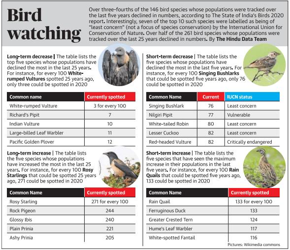 List of birds in decline in India