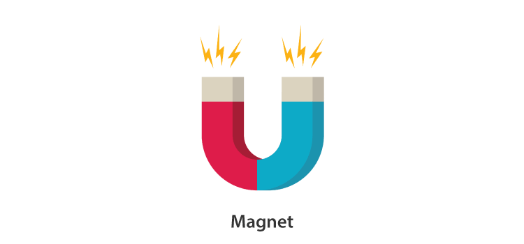 Poles of a Magnet