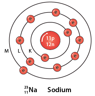 Selina Solutions Concise Physics Class 10 Chapter 12 - 3