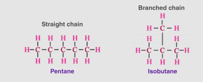 Carbon-and-Its-Compounds-13