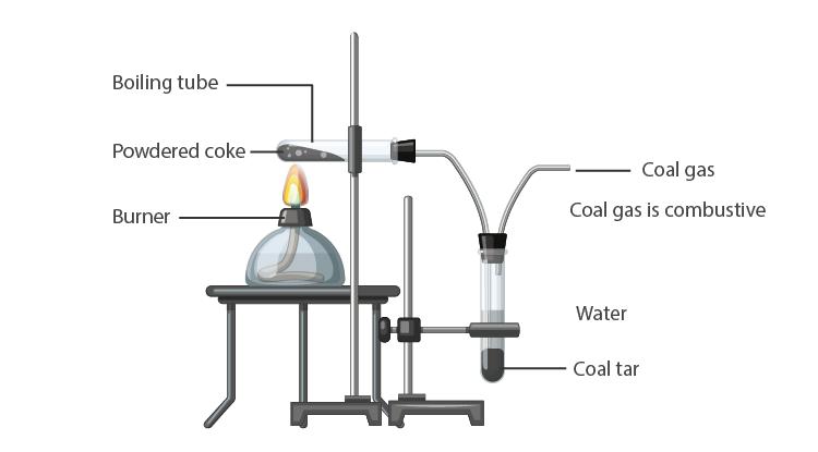 Coal and Petroleum 02