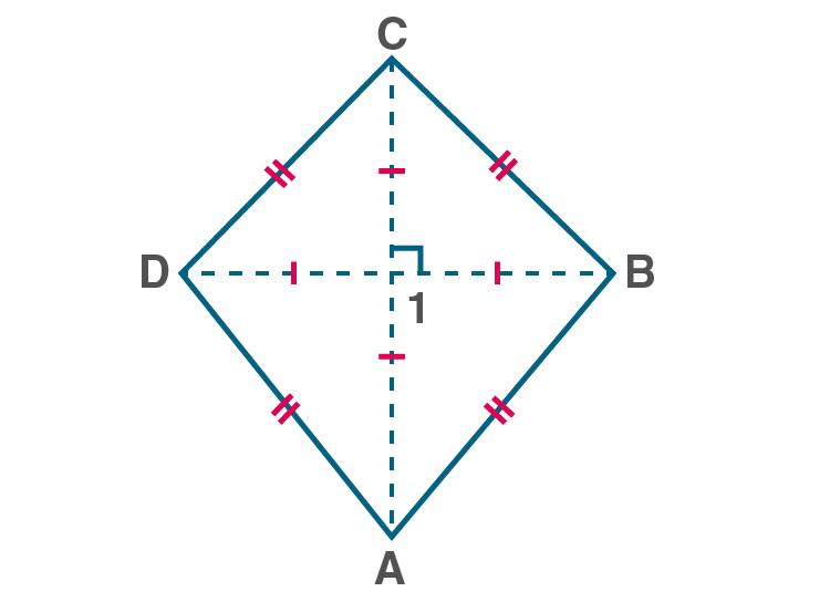 Quadrilaterals Class 9-14