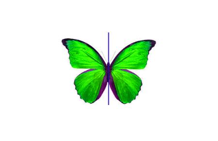 Symmetry-2