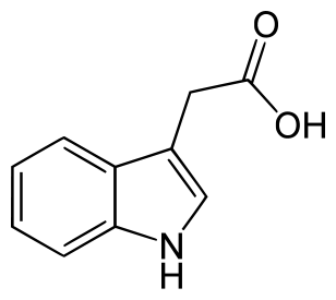 Auxin Indoleacetic acid (IAA)