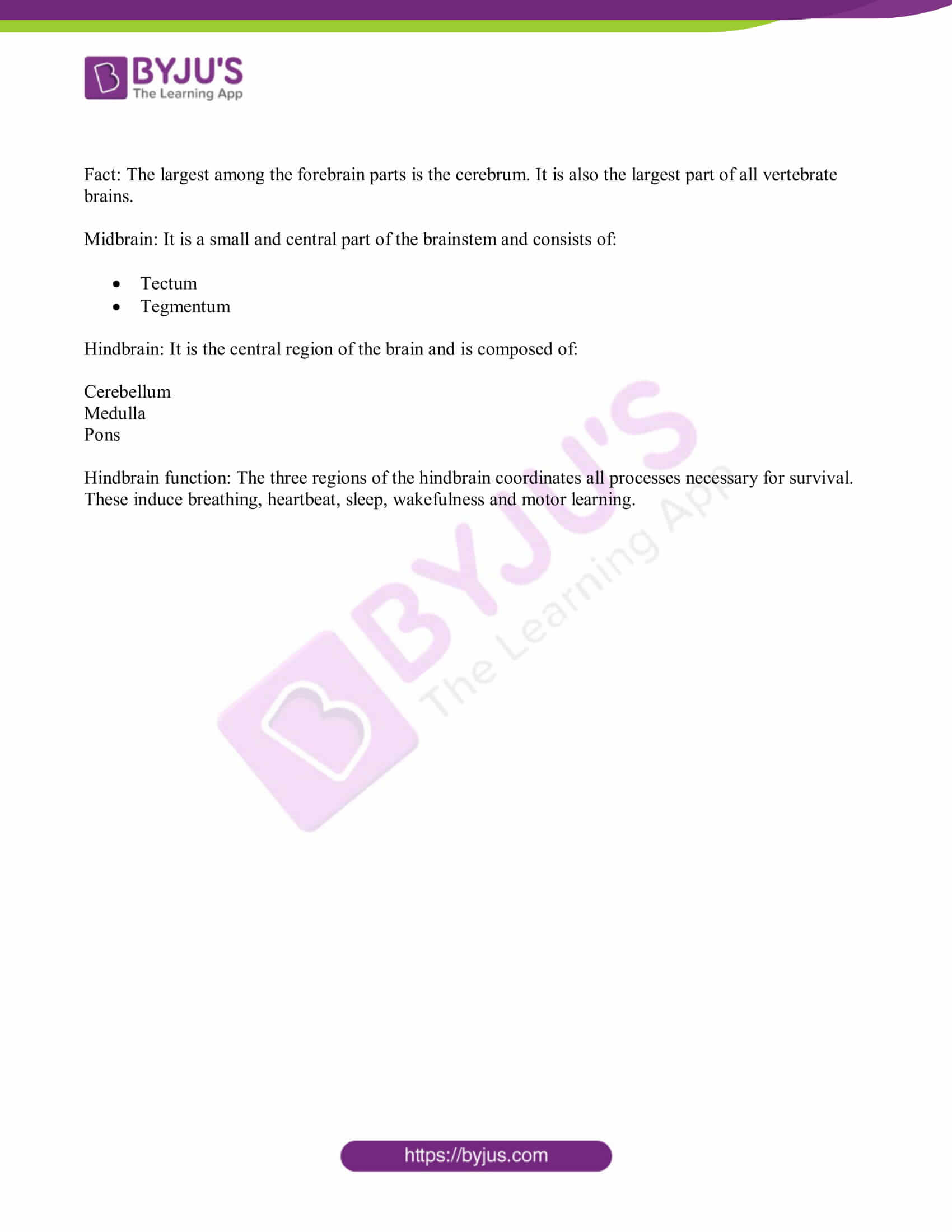 bihar board class 10 sci solved pre year quest papers 2019 25