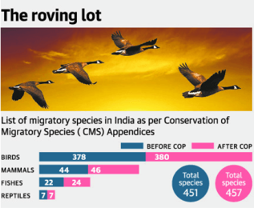 List of migratory species in India as per CMS Appendices