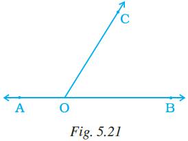 NCERT Exemplar Class 7 Maths Solutions Chapter 5 Image 14