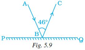 NCERT Exemplar Class 7 Maths Solutions Chapter 5 Image 2