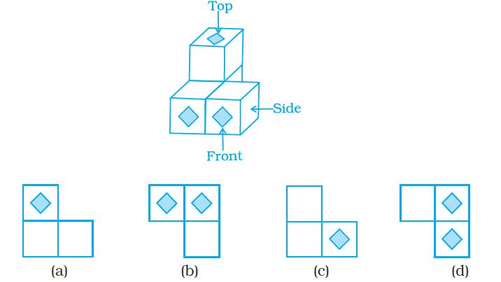 NCERT Exemplars Class 8 Maths Chapter 6 Image 2