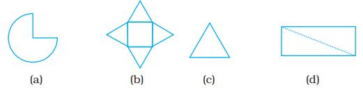 NCERT Exemplars Class 8 Maths Chapter 6 Image 6