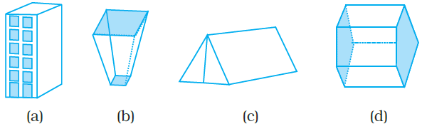 NCERT Exemplars Class 8 Maths Chapter 6 Image 7