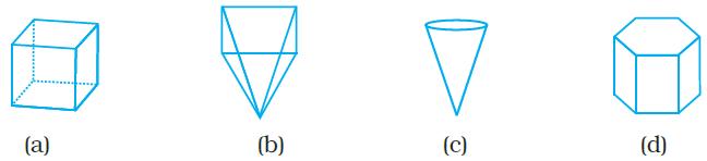 NCERT Exemplars Class 8 Maths Chapter 6 Image1