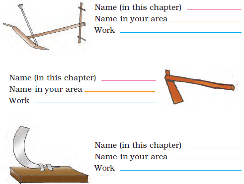 NCERT Solutions for Class 4 Chapter 14 Image 3