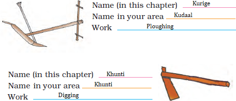 NCERT Solutions for Class 4 Chapter 14 Image 4