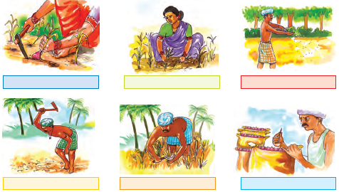 NCERT Solutions for Class 4 Chapter 14 Image 6