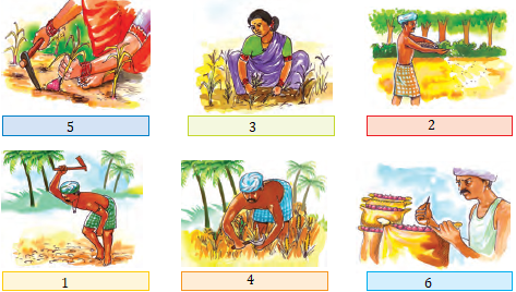 NCERT Solutions for Class 4 Chapter 14 Image 7