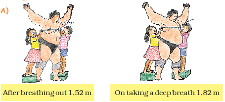 NCERT Solutions for Class 5 Chapter 10 Image 37