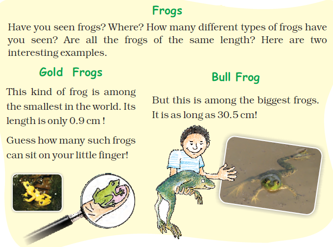NCERT Solutions for Class 5 Chapter 10 Image 4