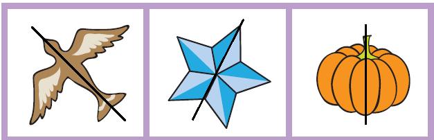 NCERT Solutions Mathematics Class 4 Chapter 9 - 29