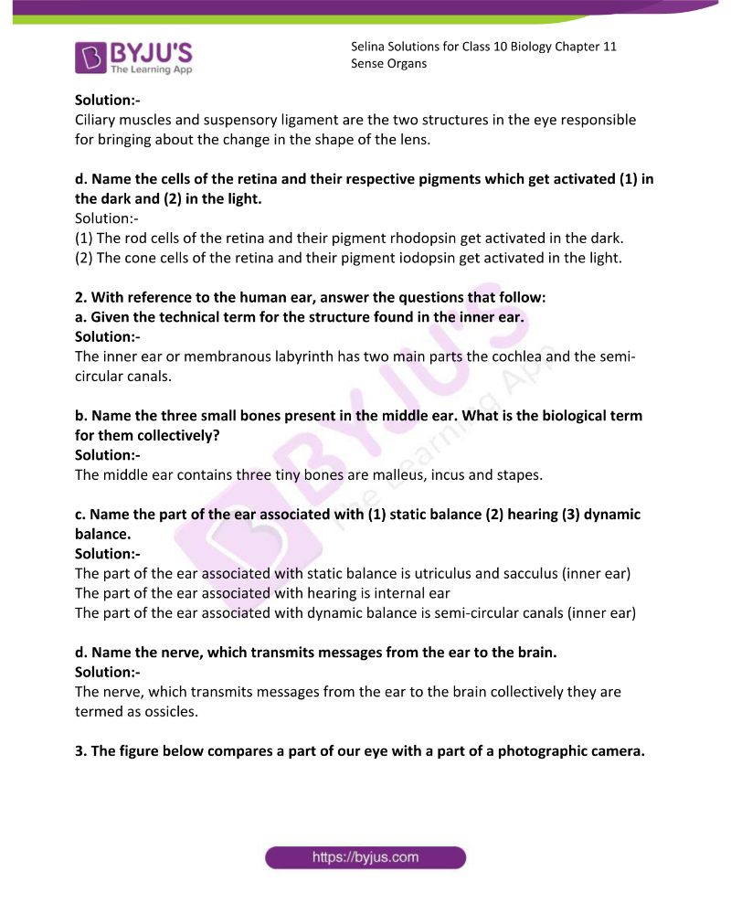 Selina Solutions For Class 10 Biology Chapter 11 Sense Organs 12