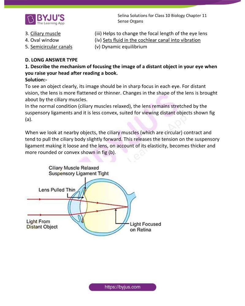 Selina Solutions For Class 10 Biology Chapter 11 Sense Organs 8