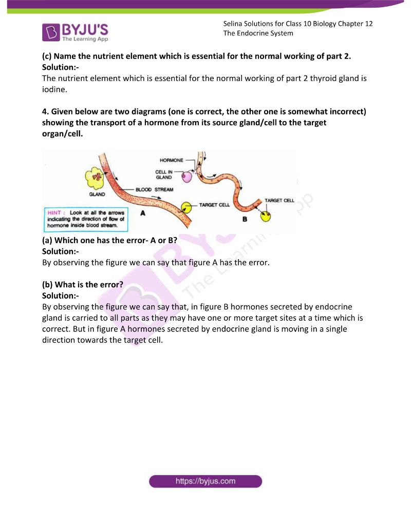 Selina Solutions Concise Biology Class 10 Chapter 12 The Endocrine