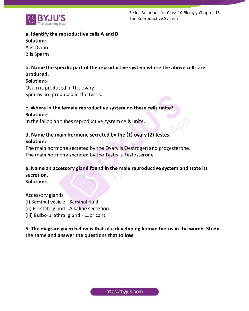 Selina Solutions For Class 10 Biology Chapter 13 The Reproductive System 18