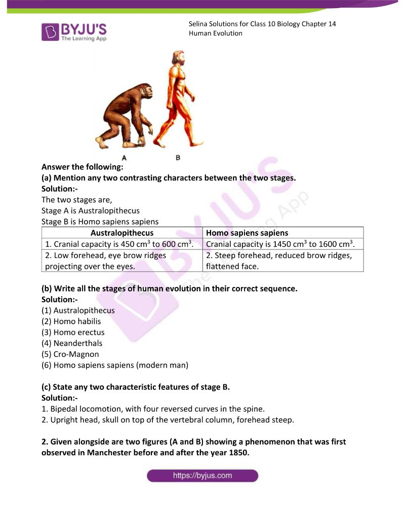 Selina Solutions For Class 10 Biology Chapter 14 Human Evolution 5