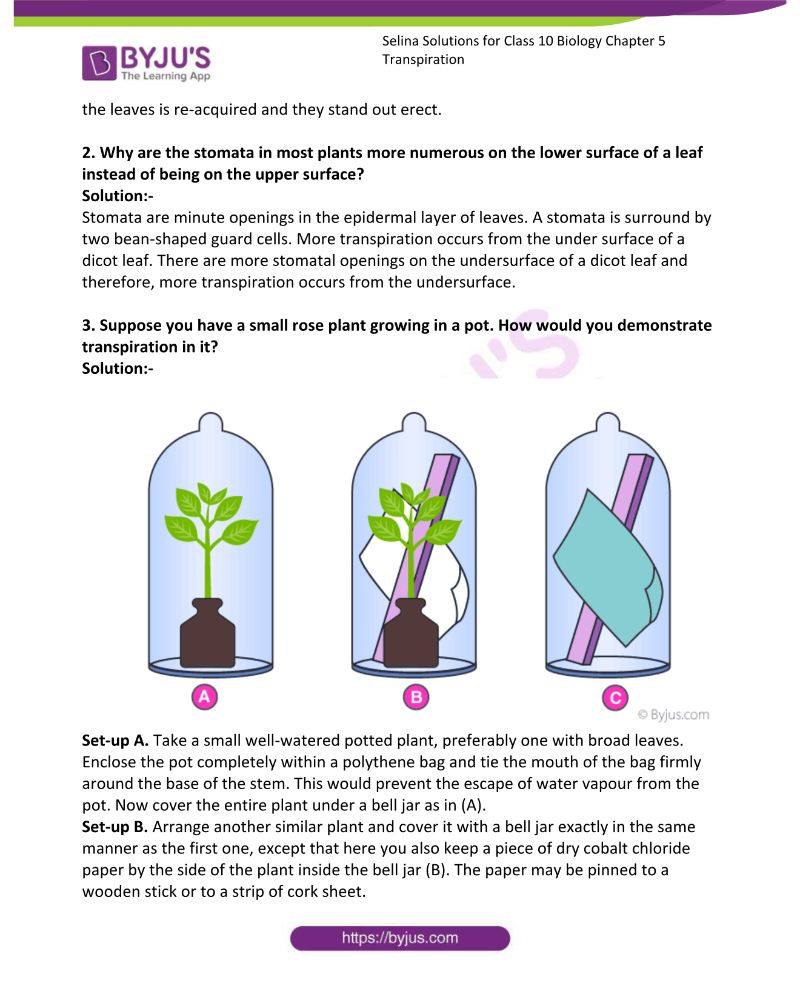 Selina Solutions For Class 10 Biology Chapter 5 Transpiration 7