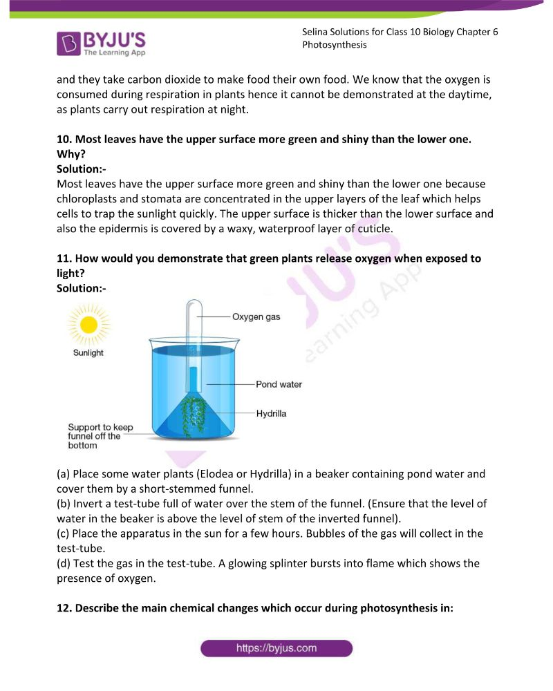 Selina Solutions For Class 10 Biology Chapter 6 Photosynthesis 9