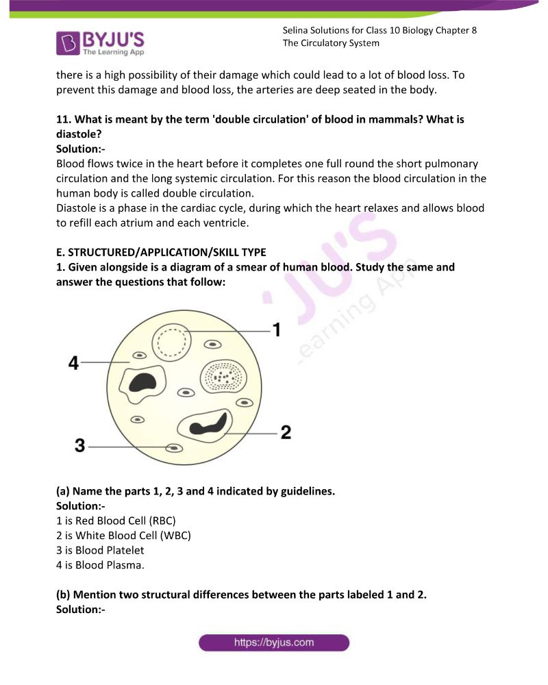 Selina Solutions For Class 10 Biology Chapter 8 The Circulatory System 13