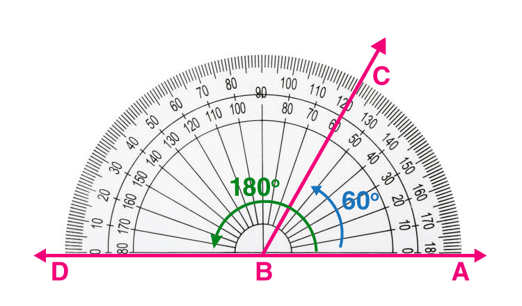Measuring 180 degree using protractor